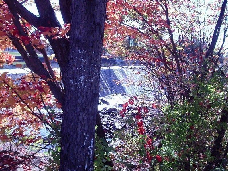 Beaver Creek Falls – Sheridan, Town of, Chautaugua