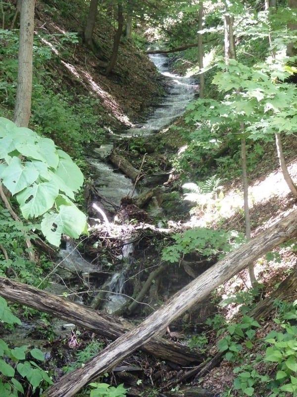Unnamed Falls, Preble, Onondaga County, New York