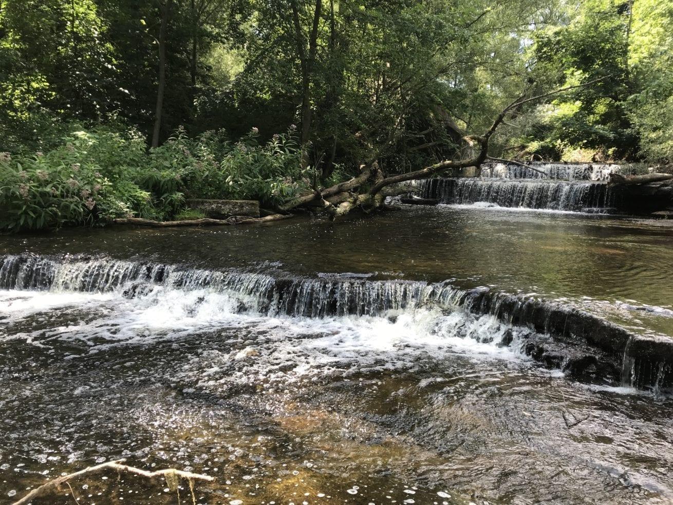 Maxwell Creek Falls, Wayne County, New York Aug 2019