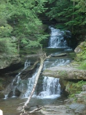 Tompkins Falls, Delaware County, New York