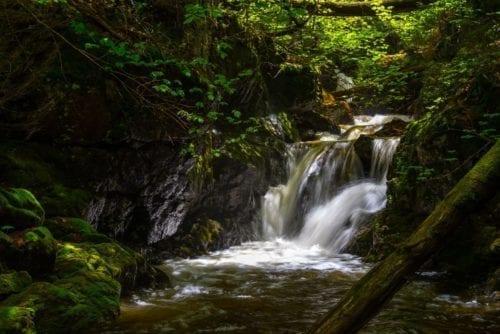 Gill Brook, Falls on – Keene, Essex