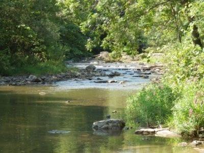 Honeoye Lower Falls, Monroe County, New York 8-12-2013
